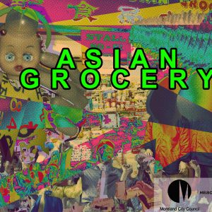 Asian Grocery 2017